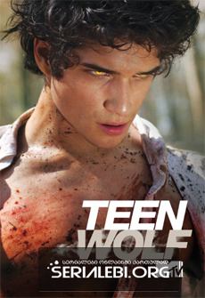 თინეიჯერი მგელი სეზონი 1 ქართულად / tineijeri mgeli sezoni 1 qartulad